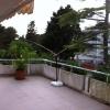 9A5BDD homemade Buddipole 06